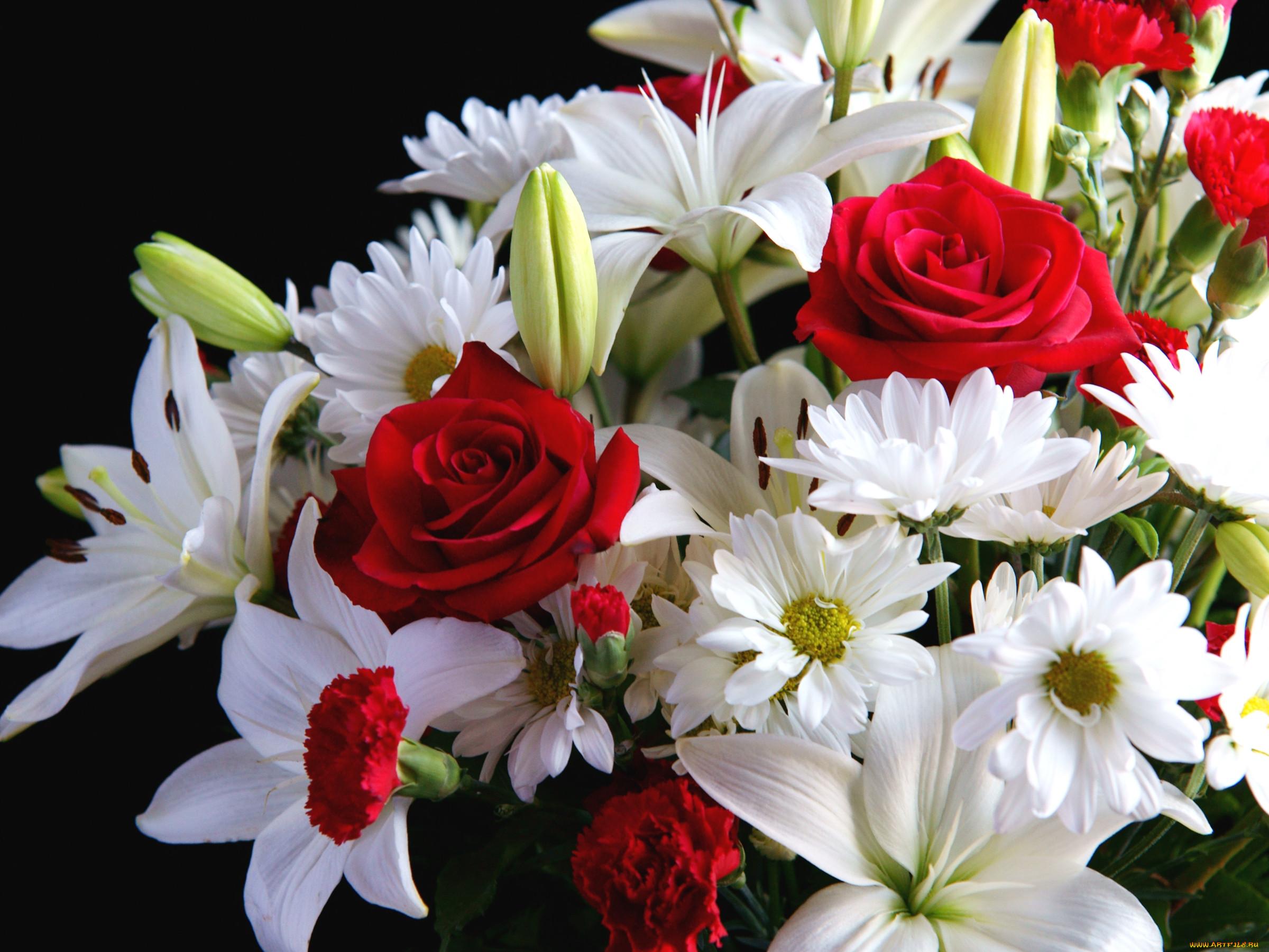 картинки ромашки с лилиями замечательное украшение